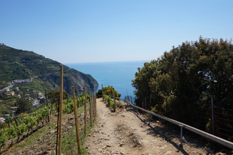 Hiking trail from Riomaggiore to Manarola