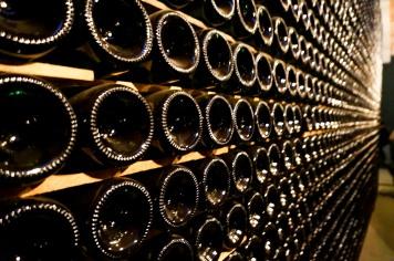 winery12