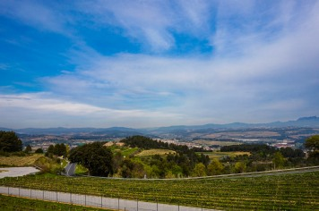 winery14