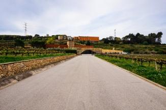 winery19